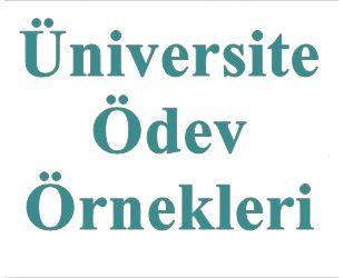 Üniversite ödev örnekleri