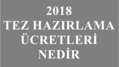 2019 Tez hazırlama ücretleri [guncel bilgi]