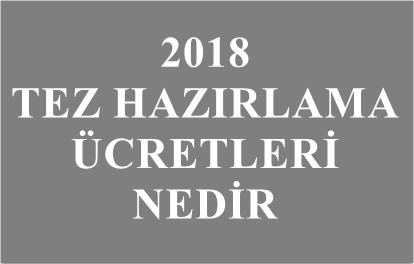 2018 tez hazırlama ücretleri