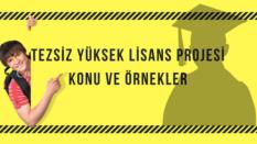 Tezsiz yüksek lisans projesi konuları, örnekleri