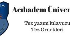 Akademik danışmanlık verdiğimiz İstanbuldaki üniversiteler