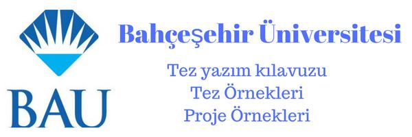 bahçeşehir üniversitesi akademik danışmanlık
